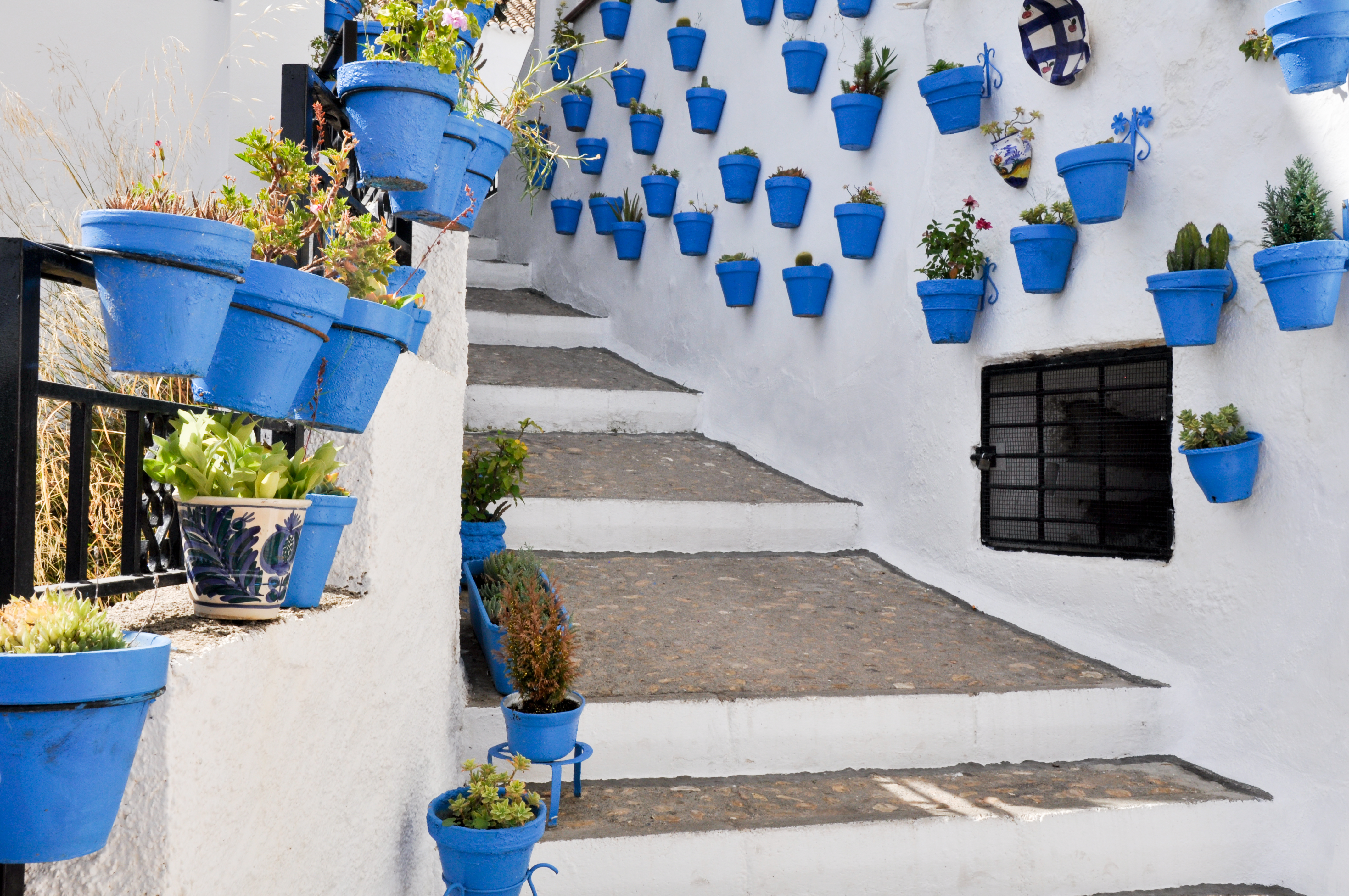 Route of the white villages in andalusia rural tourism for Ideas para mi jardin