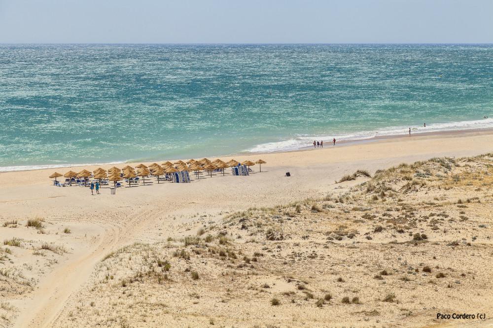 Playa de la Fontanilla en Conil de la Frontera, Cádiz