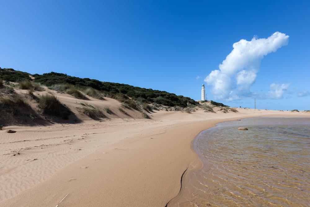 Playa del Faro de Trafalgar, en Cádiz