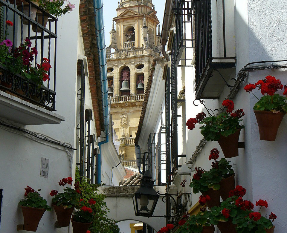Calleja de las Flores with the Cathedral on the background