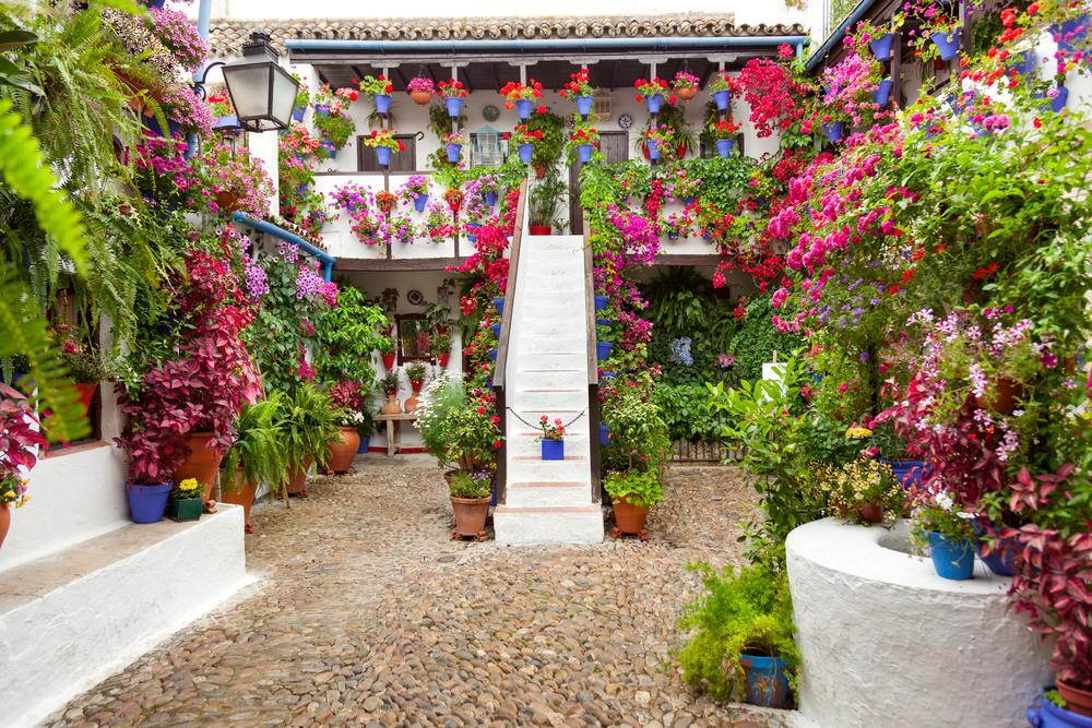 Patio familiar en Córdoba