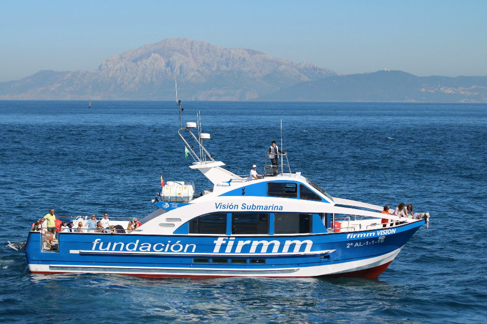 Things to do in Tarifa. firmm VISION new boat to whale watch.
