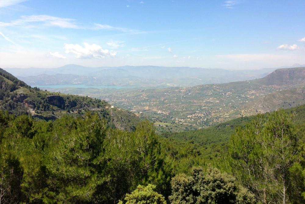 Sierras de Tejeda, Almijara y Alhama Naturpark in Frigiliana
