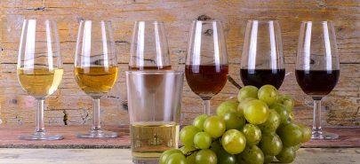 Vino de Jerez y gastronomía de Jerez de la Frontera