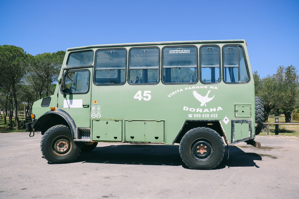 Geführte Touren in Doñana