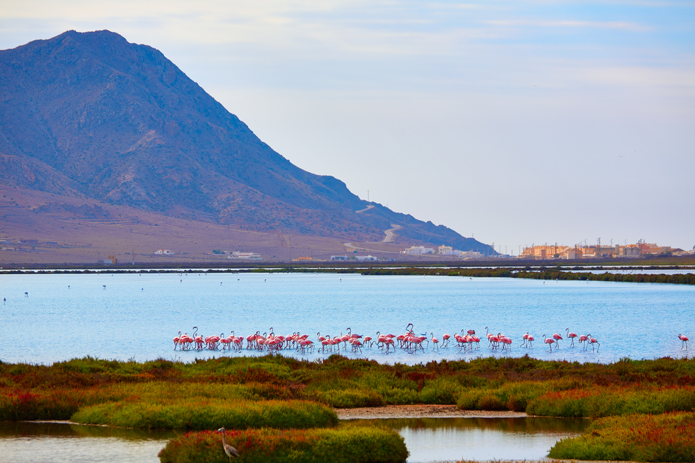 Cabo de Gata-Níjar natural park in Almería - Las Salinas