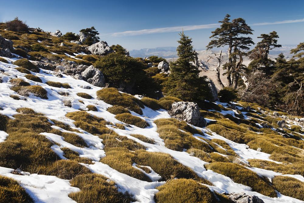 Sierra de las Nieves natuurpark in Malaga