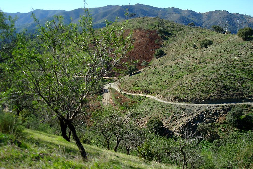 Pfad im Naturpark Montes de Malaga