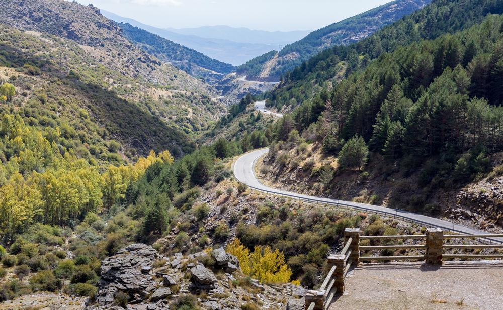 Chemin et paysage dans le parc national de la Sierra Nevada