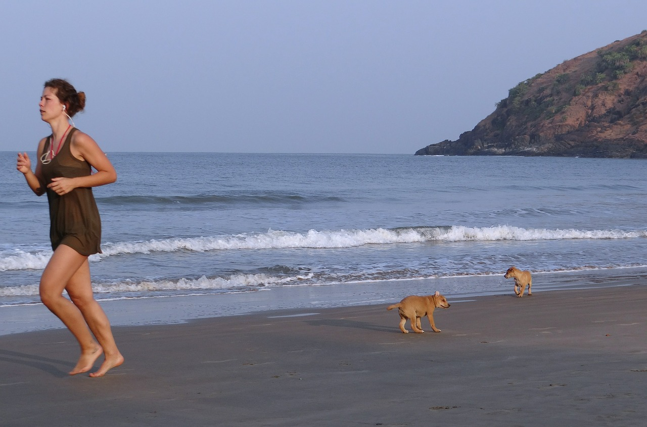 Puppies op het strand