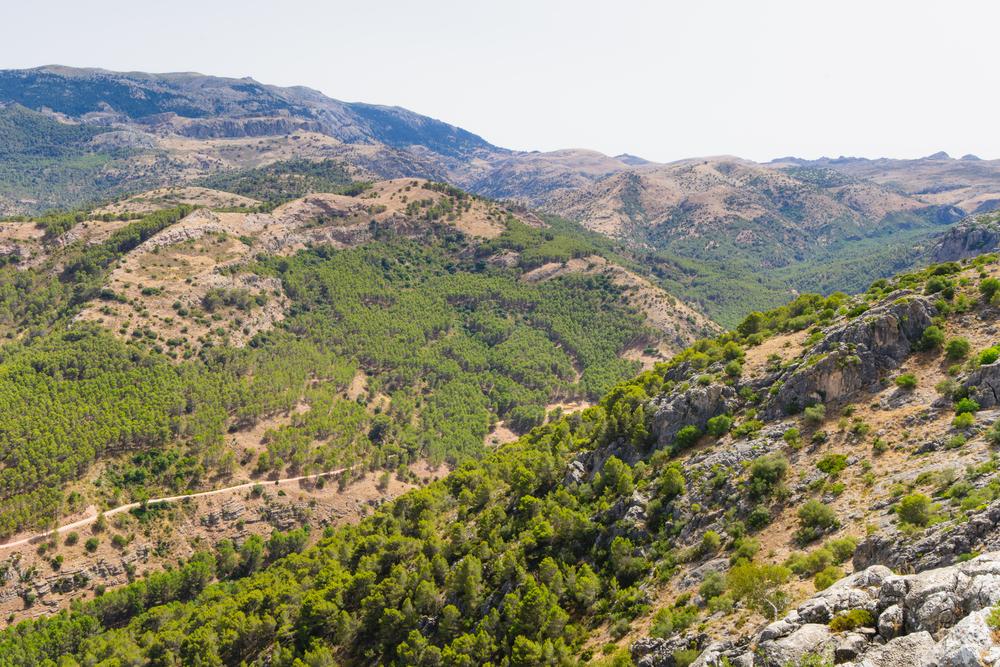 Landschap van het natuurpark sierra de las nieves