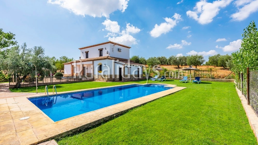 Casa de vacaciones rodeada por campos de olivos en Ronda - MAL0669