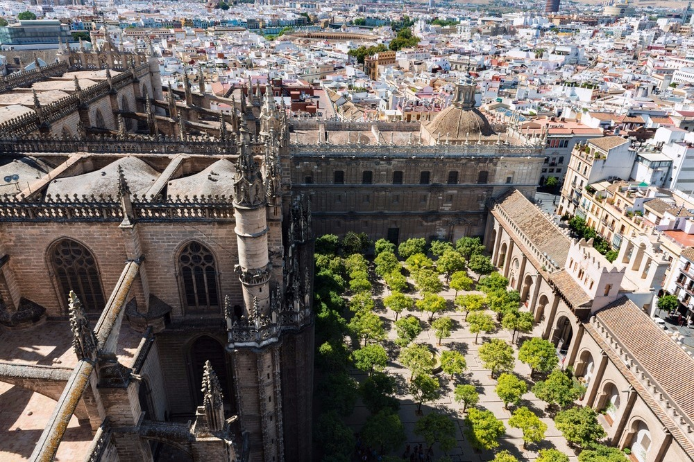 Orangenbaum Patio in der Kathedrale von Sevilla