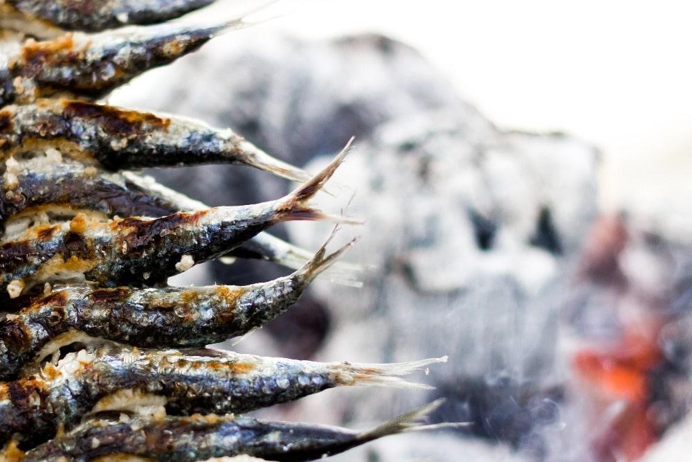 Espeto de sardinas om te eten in Malaga voor Valentijnsdag