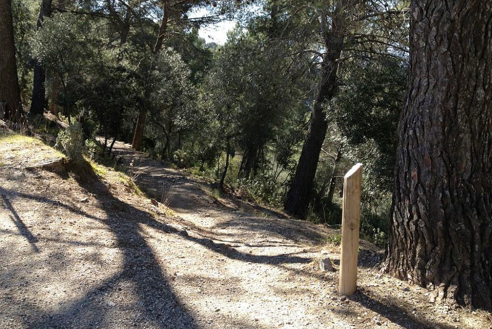 Sendero en el parque natural Montes de Málaga